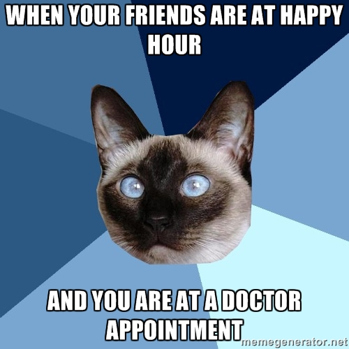 Chronic Illness Cat - When your friends are at happy hour and you are at a doctor appointment, I mean, chemo lounge...